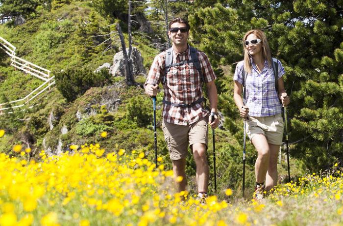Laufen / Nordic Walking